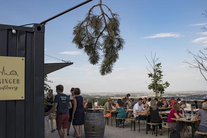 Buschenschank mit Wieninger Logo im Vordergrund und LEute auf den Bänke die trinken und die Aussicht genießen