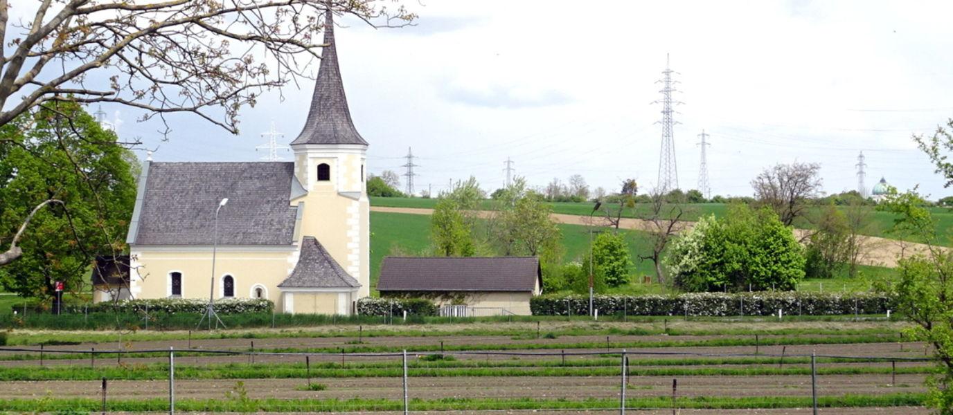 Ein Blick auf den Kirchenacker, im Hintergrund die namensgebende Johanneskirche