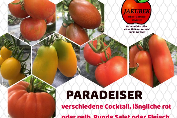 Paradeiser Gärtnerei Jakubek