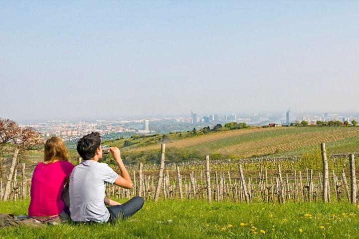 Weingarten Wailand: Paar sitzt im Gras mit Blick über Wien