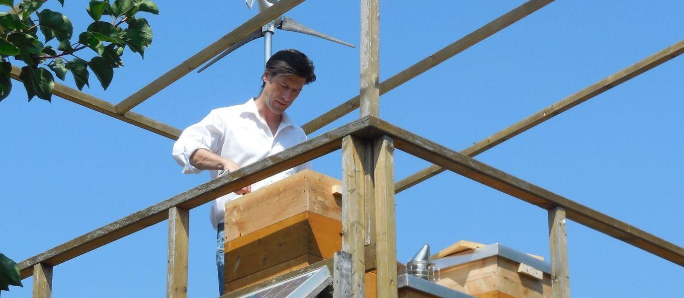 Imker steht am Bienenstand und inspiziert ein Bienenvolk