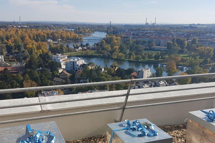Die Donaustädterbienen im 19. Stock