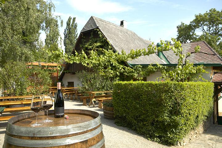 Gastgarten Weingut Edlmoser